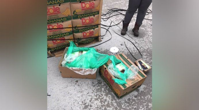 Texas prison guards find nearly $18M worth of cocaine in donated bananas