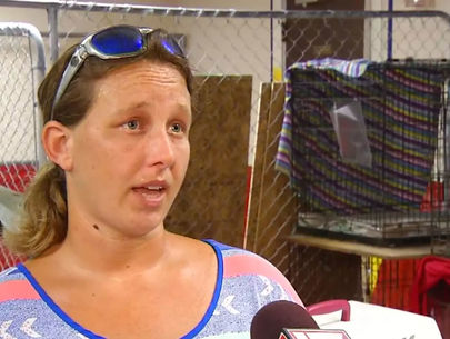 Woman arrested for caring for pets without permit during Hurricane Florence