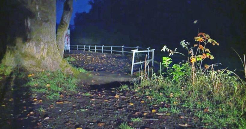 Washington couple finds skinned dog near river: 'He had no ears, no tail, no paws'