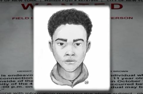 11-year-old girl raped in bathroom at Bronx park