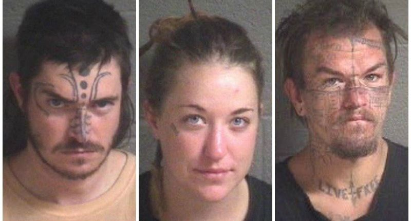 2 arrested, 1 wanted after mutilated cat found in Asheville