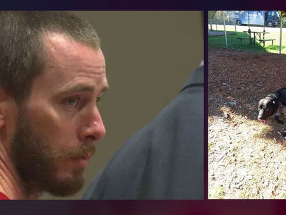 $100K arrest warrant for man accused of torturing family dog, posting photos