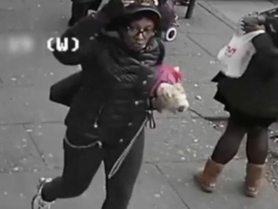 Two women slashed after trying to pet service dog: Police