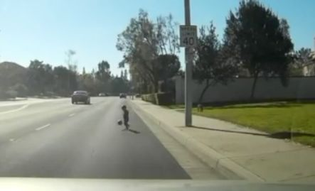 Dashcam video shows man rescuing toddler who ran into Tustin Street unaccompanied