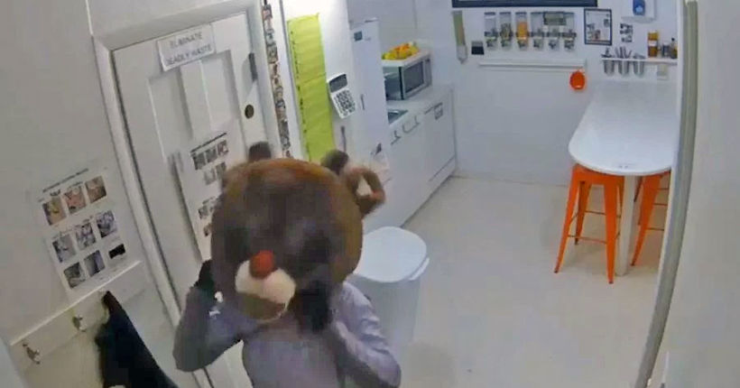 Female suspect wears Rudolph the Red-Nosed Reindeer costume in Fort Collins burglary