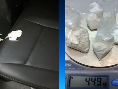 Florida man chews up police car seat after cocaine arrest