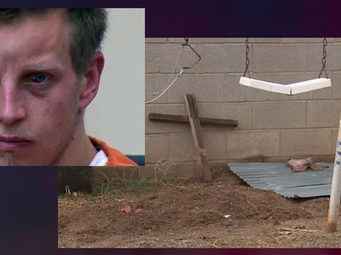 Man says landscaper asked to bury cat in backyard - but it was dead baby