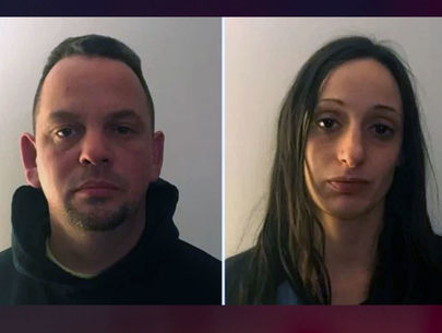 2 arrested after 24 animals found inside Long Island home: police