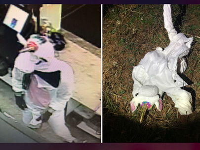 Unicorn-costumed robbery suspect unmasked, Maryland police say