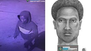 Police search for man who sexually assaulted, pulled women's hair in park