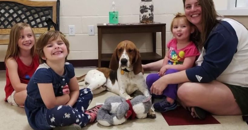 Family crediting dog for rescuing children from possible kidnapping