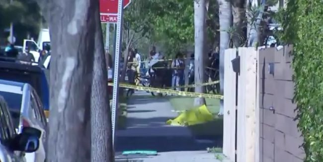 29-year-old man fatally shot in the head in Venice; 4 sought: LAPD