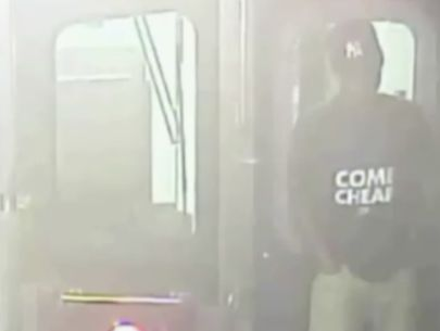 Possible suspect intentionally pulling subway brakes emerges
