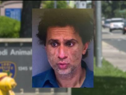 Dozens of animals, alive and dead, discovered in home; man arrested