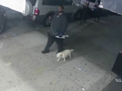Man shot and killed while walking his dog in Harlem: Police