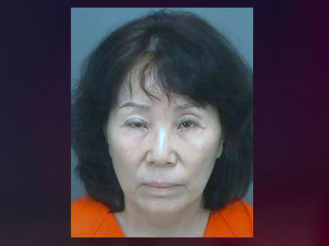 Florida woman accused of urinating in ice cream machine at shop