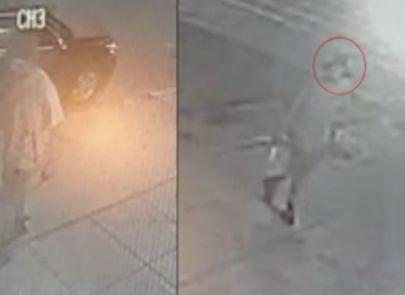 Trespasser sought after killing 'harmless' dog: Police