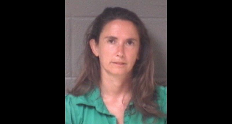 Woman tries to take boy from N.C. park, police say