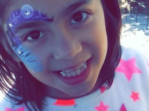 9-year-old girl mauled to death by pit bulls