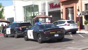 Police say no signs of shooting at mall where gunfire reported