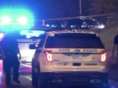 Man found fatally shot in head on expressway: Police