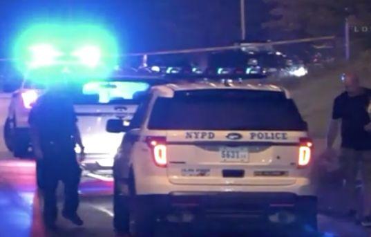 Man found fatally shot in head on Staten Island Expressway: Police