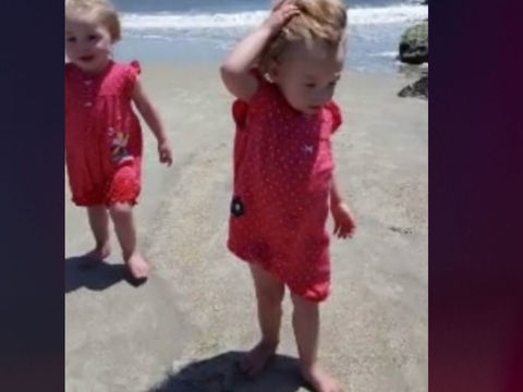 3-year-old twin girls found dead in hot car