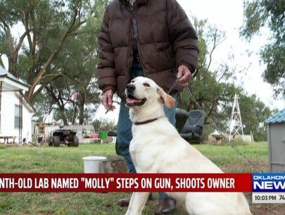 Woman treated for gunshot wound after dog sets off gun