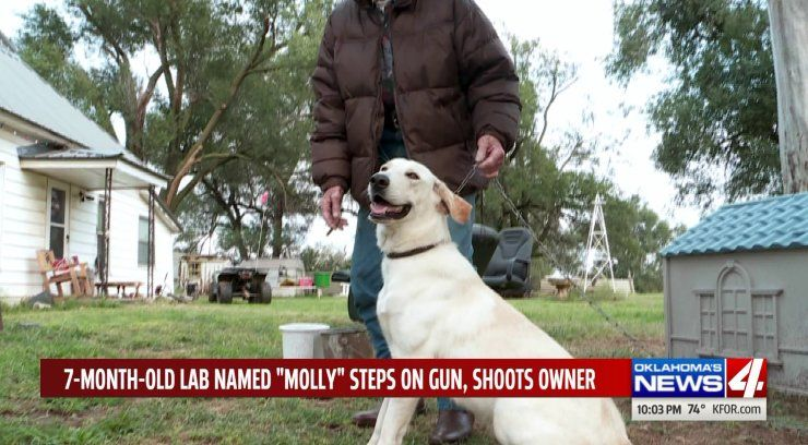 Woman treated for gunshot wound after dog sets off gun; 911 call audio released