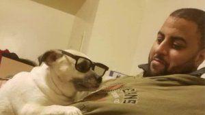 Arrest in stray-bullet killing of Harlem man walking dog