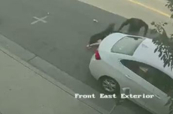 Video shows Lyft driver dragging woman from car on Melrose Avenue