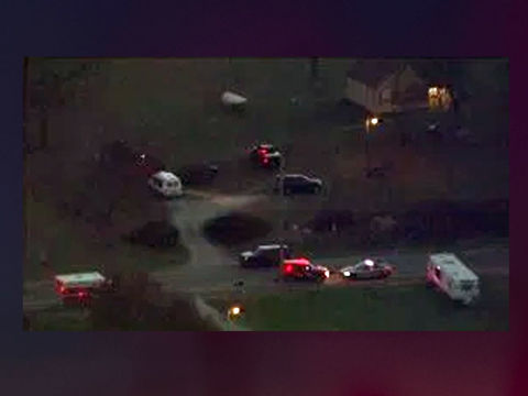 Person shot in head after neighbor shoots dog, police say