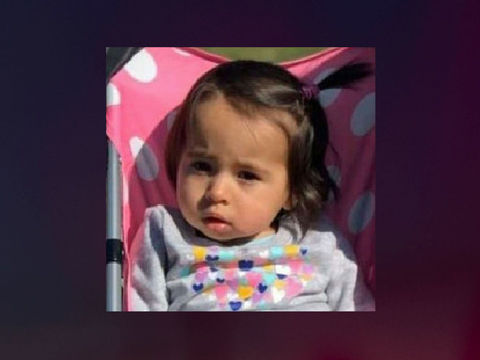 1-year-old Connecticut girl missing from scene of homicide
