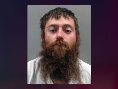 Man arrested on 10 felony counts after several dogs found dead