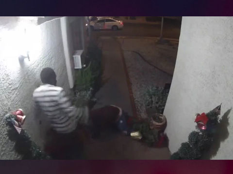 Woman's kidnapping captured on home surveillance camera