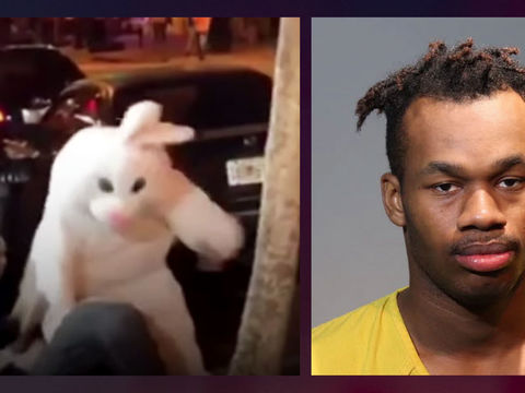 'Orlando Easter Bunny' nabbed fleeing hit-and-run crash — in costume