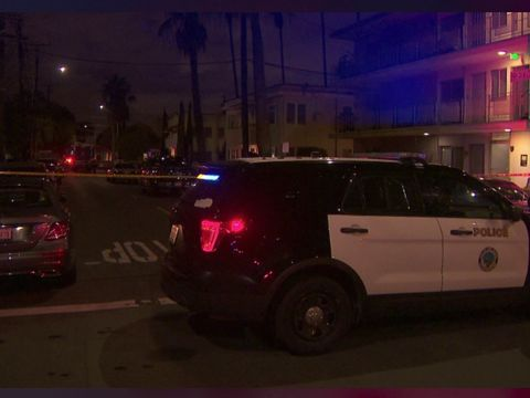Officer fatally shoots woman trying to stab her mom inside home: Police