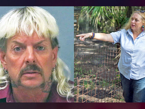 Judge orders Joe Exotic's park to be turned over to Carole Baskin