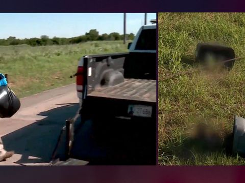 Beaten dead dogs, cats repeatedly dumped in Oklahoma City ditch