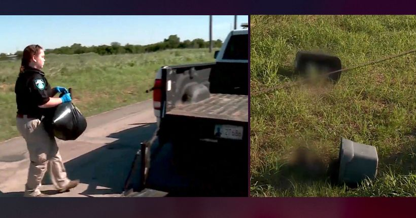 Badly beaten dead dogs, cats repeatedly dumped in Oklahoma City ditch