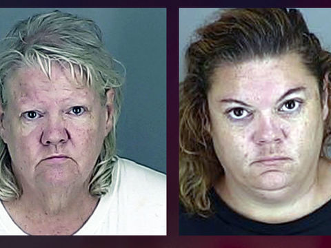 Woman, daughter sentenced after pit bulls attack store employee