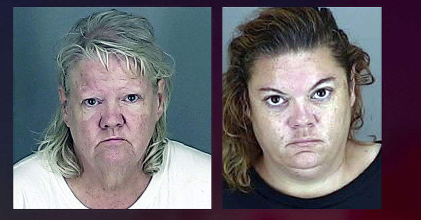 Ohio woman, daughter sentenced after pit bulls attack employee in store theft