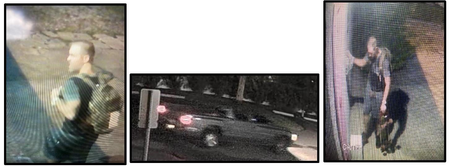 cat-blood-suspect-st-johns-county-fb